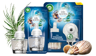 Scented Oils Plug Ins